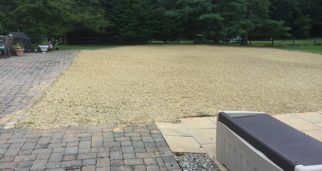 Carroll Bros. Contracting Stevensville Pool Removal Results