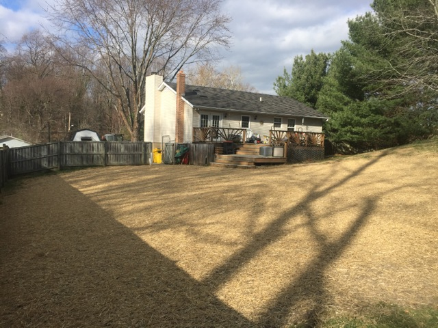 Carroll Bros. Contracting Arnold Pool Removal Results