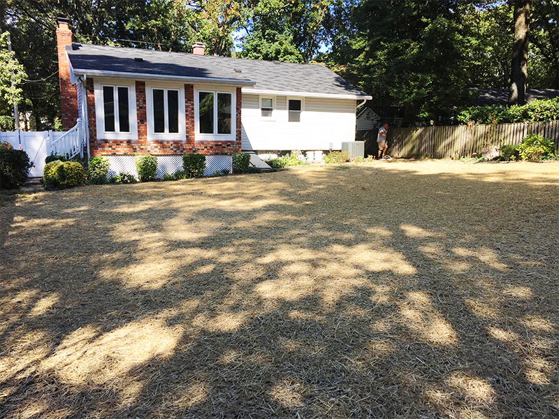 pool removal in Annapolis, MD 3